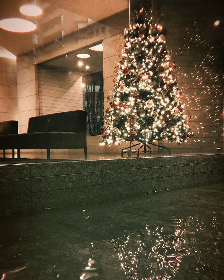 Hijo del dueño. #life #christmas #tree #lights #reflection #water #bogota #xmas #instagram #botd #bestoftheday #wish #love #night