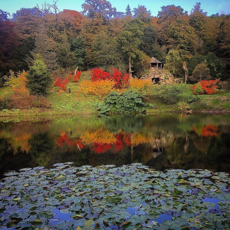 #chatsworth #chatsworthhouse #chatsworthhousegardens #autumn #lake #red #orange #green #leaves #grottopond #grotto #lilypads #colour #derbyshire #peakdistrict #england