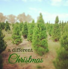 Kids sharing time with you and the ex this year? We know what that's like. Check out our latest blog A Different Christmas here: http://www.steppingthrough.com.au/a-different-christmas-2/ #stepfamily #coparenting #shared Christmas