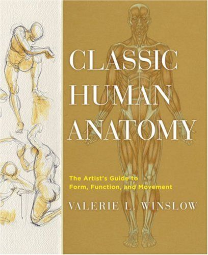 231 best art books images on pinterest amazon anatomy and classic human anatomy the artists guide to form function and movement fandeluxe Choice Image