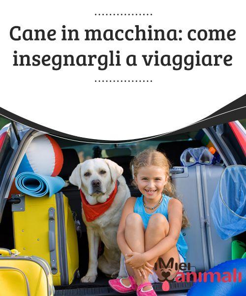 Cane in macchina: come insegnargli a viaggiare  Qualsiasi scusa è buona per prenderci una #vacanza, sia per un breve fine settimana che per andarci a rilassare in una spiaggia deserta, o persino semplicemente  per #andare a far #visita ai nonni in paese.  #CONSIGLI