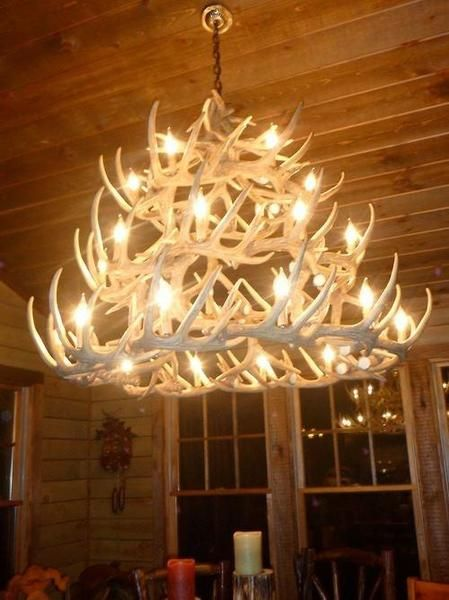 69 best fox stuff that i want images on pinterest dirt Log cabin chandelier