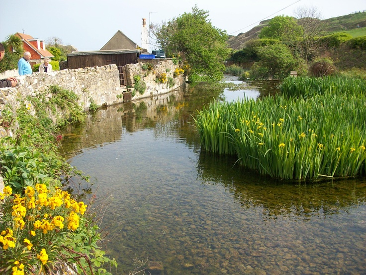 Lulworth Cove, Dorset England. Fresh and clean river flowing to the sea. Discover Purbeck