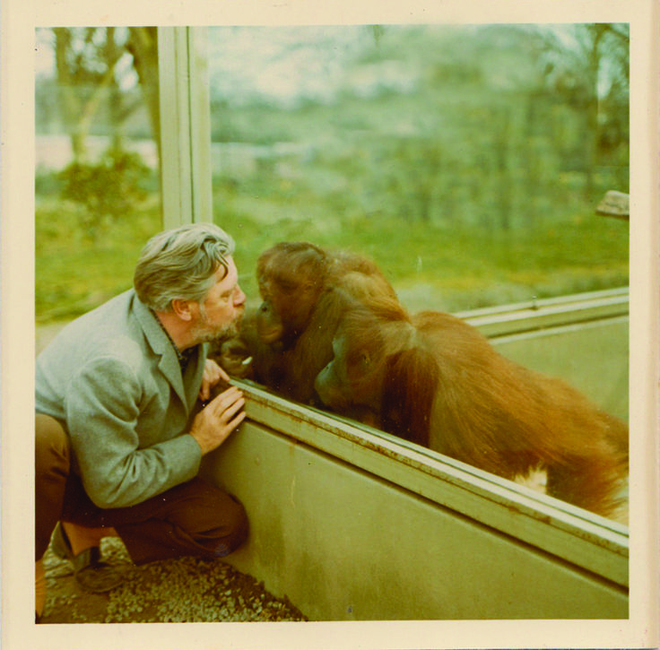 Gerald with Gina the orang-utan, who sadly passed away late last year.