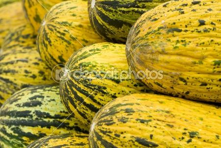 Yellow melons -  yellow, watermelon, water, vegetarian, vegetale, tropicali, tasty, sweet, summer, striped, stall, snack, skin, seasonal, season, raw, produce, plant, pile, organic, nutrition, nature, natural, modello, melon, mature, market, many, juicy, healthy, health, group, green, fruit, freshness, fresh, food, eat, display, diet, dessert, delizie, crop, color, closeup, circle, background, autumn, agriculture