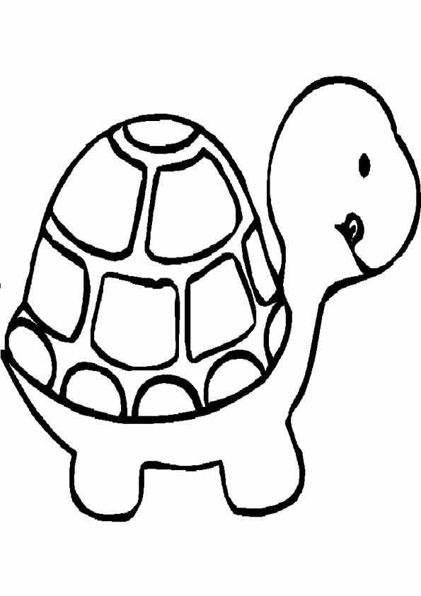 dibujo-de-tortuga.jpg (595×842)