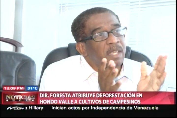 El Director De Foresta Le Atribuye La Deforestación En Hondo Valle A Cultivos Hechos Por Campesinos