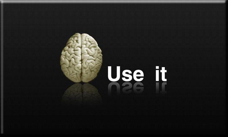 brain ......................................