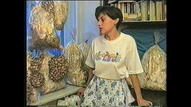 Домашний бизнес Медведева. Выращивание грибов дома.