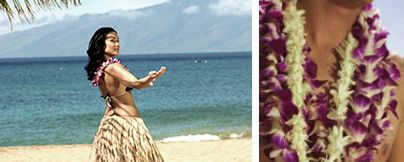 Hula Show, Hula lessons, Lei-Making Lessons.  All free!  Check schedule. $0