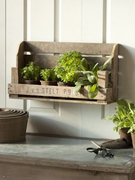 Old Crate turned shelf with herbs...