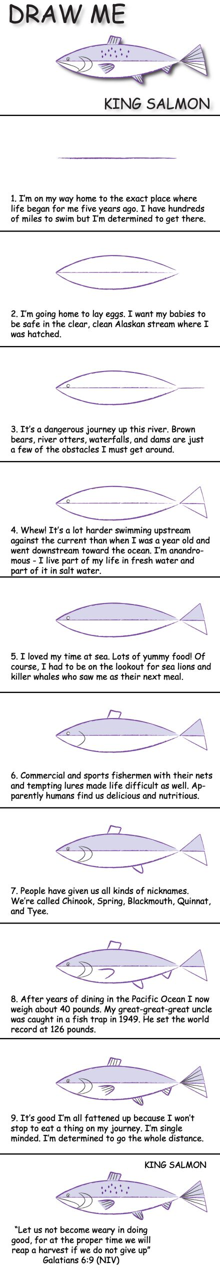 Draw a salmon in 10 easy steps and learn fun facts about its life. © 2013 Marty Nystrom