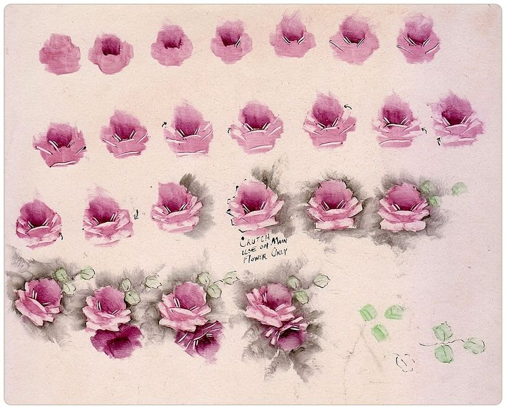 200 best images about china painting roses instruction for How to paint a rose step by step