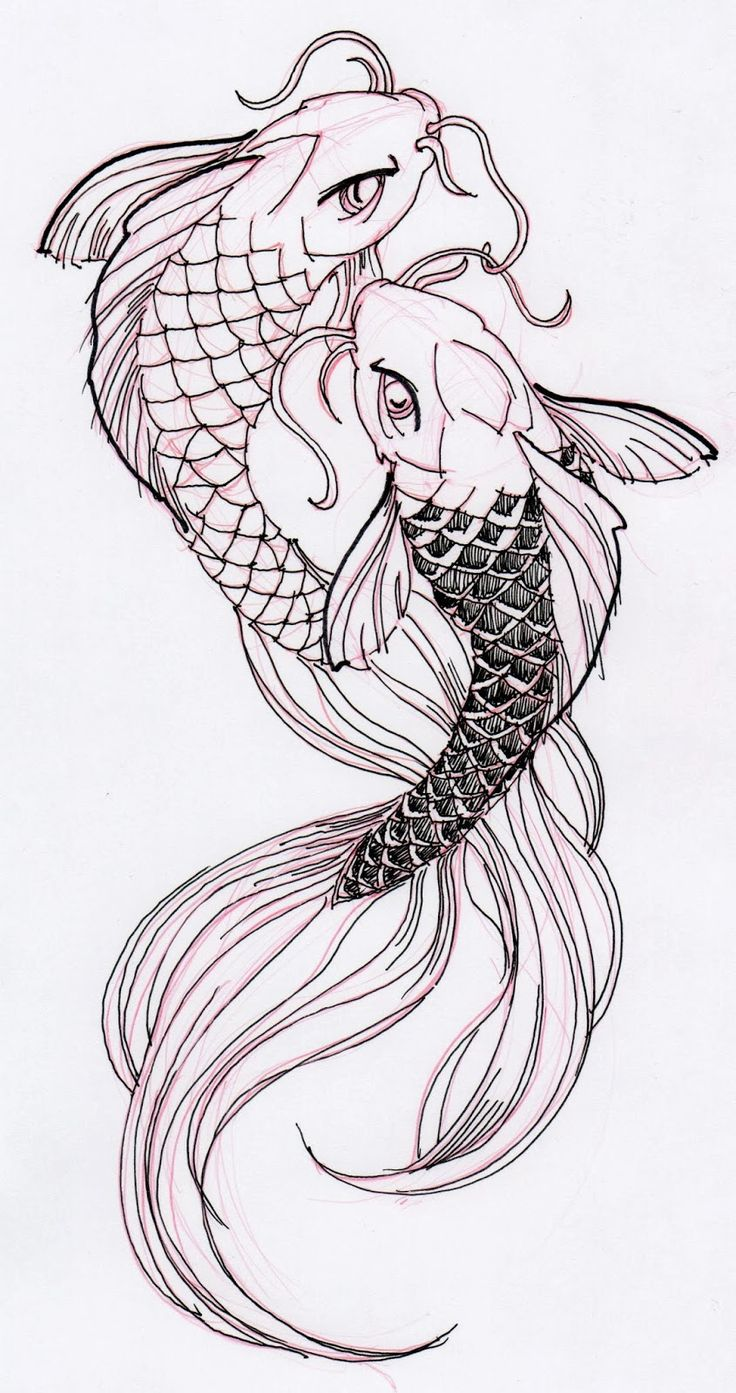 Two cool koi fish ink drawing stuff for school for Japanese koi fish drawing