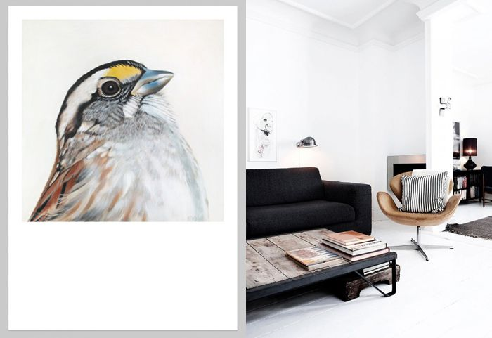 NZ Art Prints Blog | endemicworld Art Prints & Posters matched with Interiors