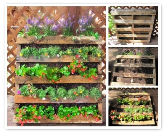 What a great use for old Pallets.  I totally want to try this in the spring!