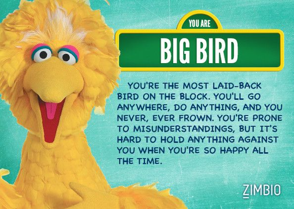 What Sesame Street character are you? Take the quiz. I got Big Bird! Cool