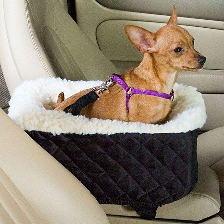 "Black, 10""W X 17""D X 10""H, For pets up to 4 lbs., Let your pet ride in his favourite spot close to you. Console Lookout lets your small pet ride safely and comfortably atop your car's console. Use with harness and supplied strap for pet safety."