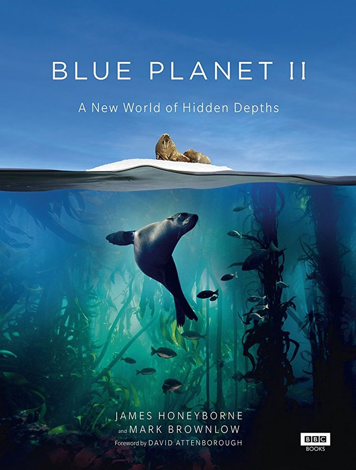All BBC Blue Planet Related Series: Cover Stories & Running Commentaries in opposition to God's Word by Voiceovers, and Tricks & Treats are via the thought processes aligned to Christ's opponent domain by high spiritual debt delusions (2 Thess 2:9-12) thus calls of nature by the dogs falsehoods cited in Rev 22:15 under world guises of knowledge & understanding. Reads: Romans 1:20 - John 1:3 - Job 12:7-10 - Psalms 95:4-5/104:24-25 - Isaiah 43:20/24:4-6. A Big Thumbs down from The Holy Spirit.