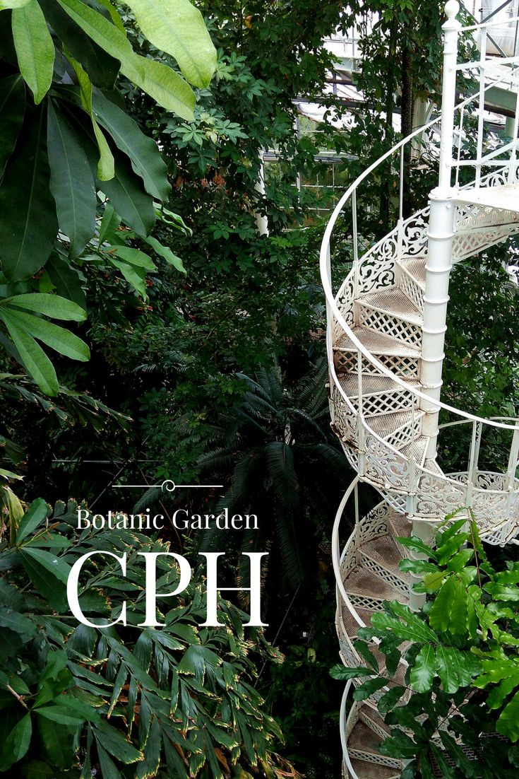 What to see in Copehnagen, Denmark? Botanic Garden and Palm House