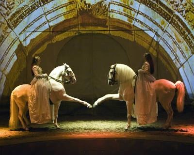 Cavalia--equine elegance. That was a great show. Amazing what these horses and people can do together.