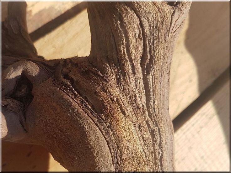 Organikus, natúr fa bútorok - # Loft bútor # antik bútor#ipari stílusú bútor # Akác deszkák # Ágyásszegélyek # Bicikli beállók #Bútorok # Csiszolt akác oszlopok # Díszkutak # Fűrészbakok # Gyalult barkácsáru # Gyalult karók # Gyeprács # Hulladékgyűjtők # Információs tábla # Járólapok # Karámok # Karók # Kérgezett akác oszlopok, cölöpök, rönkök # Kerítések, kerítéselemek, akác # Kerítések, kerítéselemek, akác, rusztikus # Kerítések, kerítéselemek, fenyő # Kerítések, kerítéselemek, fém #…