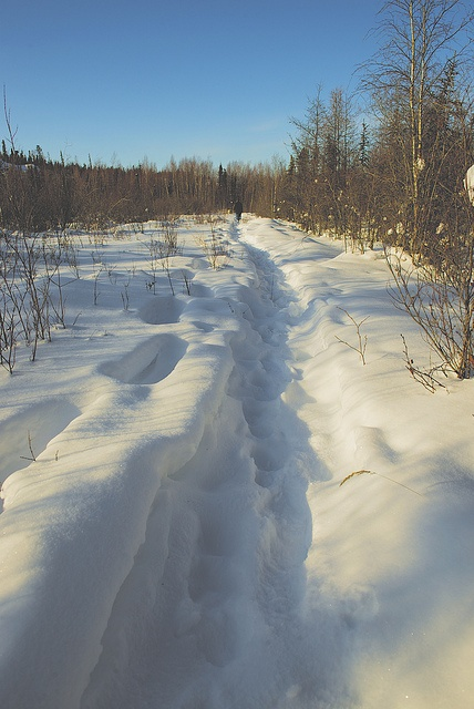 A Winters Afternoon in Yellowknife