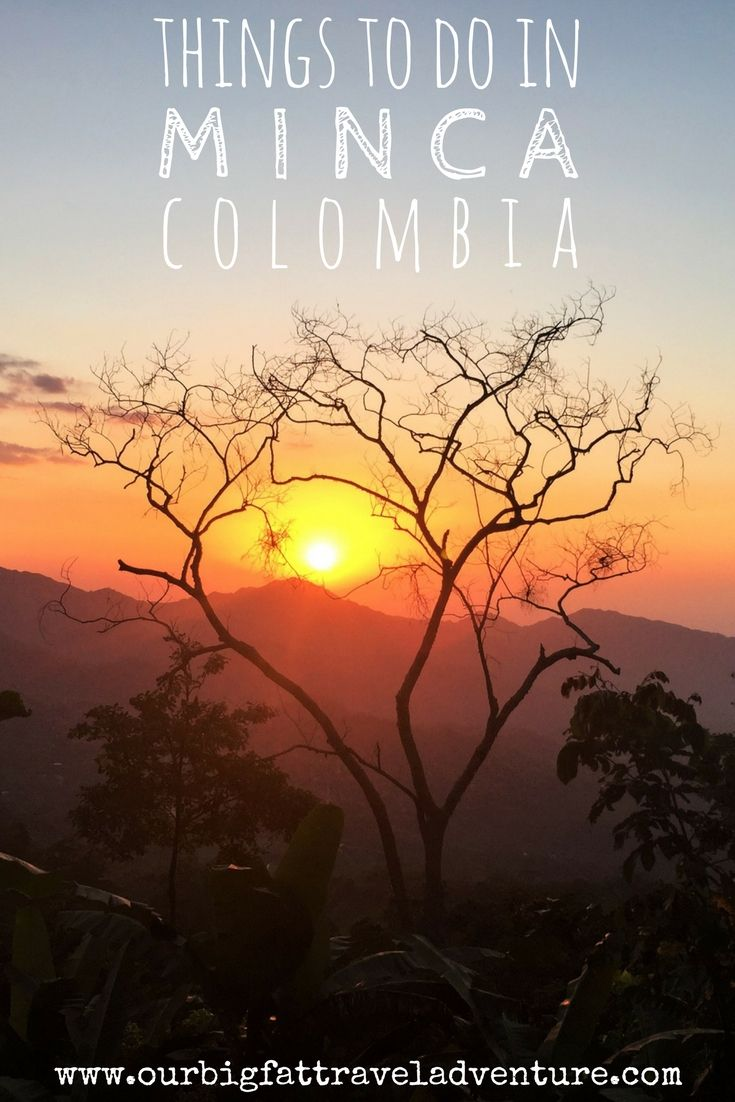 Check out our top things to do in Minca Colombia, from visiting Casa Elemento and its giant hammocks to touring Finca La Candelaria coffee and cacao farm and hiking to Cascada Marinka and Pozo Azul waterfalls. Find out where to stay in Minca, how to get to Minca and what the top restaurants are in this guide. Things to do in Minca | Minca Colombia | Explore Minca | How to get to Minca | Sierra Nevada de Santa Marta Tour #minca #mincacolombia #visitminca via…