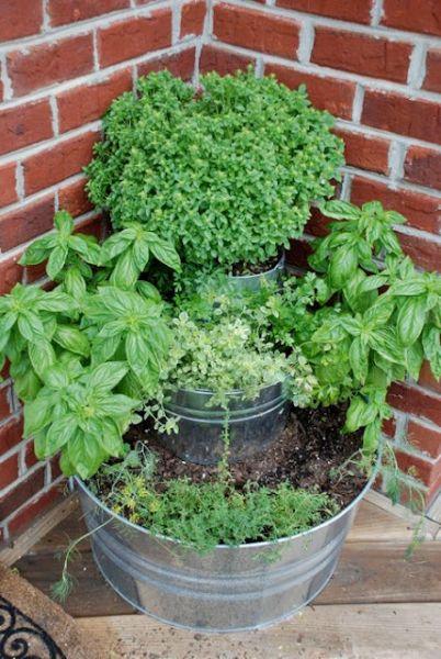 diy herb garden--tiered metal bucket herb garden from the vintage wren