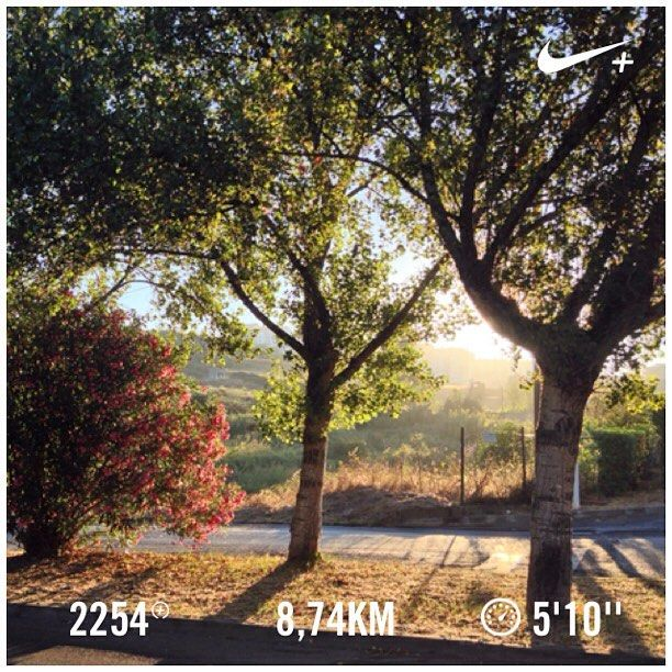 Good morning sunshine! ☀️ #run #runner #run4fun #runlife #running #runnerscommunity #instarunners #instarunning #somosrunners #nike #nikeplus #nikeplusrunners #corrida #massama #morningrun #sunrise