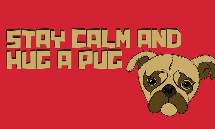 Hug a Pug! -  Willemijn//Art&Design