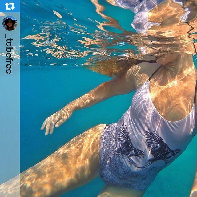 This is an amazing shot @_tobefree thanks for sharing and enjoy ✨#Repost @_tobefree with @repostapp.・・・Dancing around in some of the oceans finest water... Perfect visibility#dance #underwater #gopro #swimsuit #swimwear #beachwear #sea #clearwater #wanderlust #croatia #brac #alejaradiswimwear #travel #onepiece #trends #fashion @alejaradi.swimwear