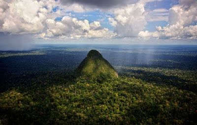 Belle Notizie: Amazzonia: le tribù sconfiggono le multinazionali ...
