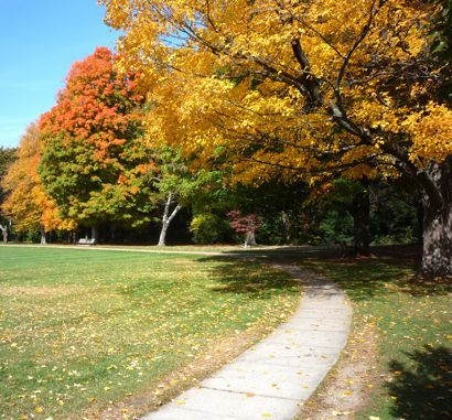 The Best New England Fall Foliage Travel Destinations, Vacations and Scenic Drives. http://www.visitingnewengland.com/fallfoliage.html