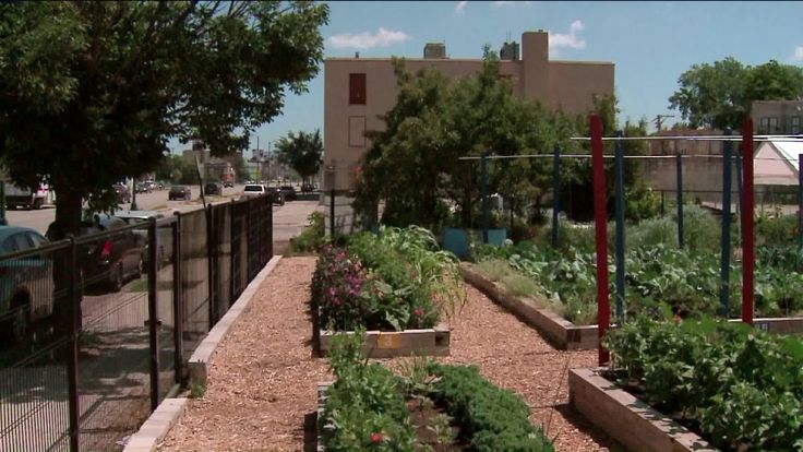 Urban farm growing opportunities in Chicago's North