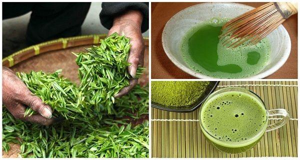 O Chá Matcha é um incrível remédio que é capaz de queimar a gordura abdominal. Ele também é uma poderosa arma na prevenção do câncer e excelente para...