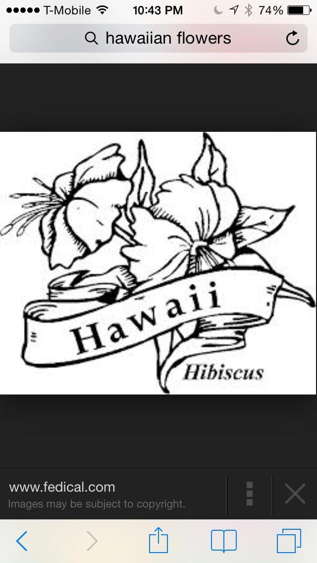 17 besten hawaii Bilder auf Pinterest | bildende Kunst, Vulkan ...