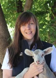 Helen Cass with one of the orphan lambs at Chesson Park White Suffolk Stud