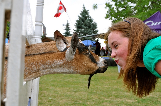 Kisses for the animals in the petting zoo The YMCA Children's Village at Kempenfest