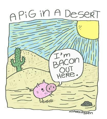 """A pig in a desert: """"I'm bacon out here."""" from funny pun 