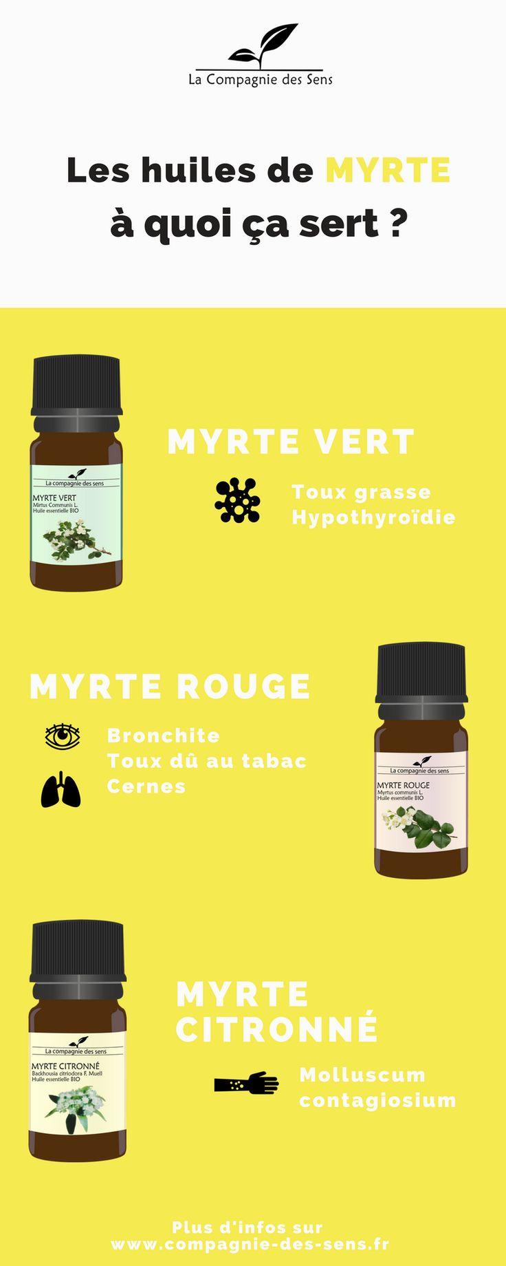 Le Myrte est lui un arbuste haut de 2 à 3 m, et fait partie de la famille des Myrtaceae. Pour les plus coriaces, ils pourront vivre jusqu'à 300 ans ! Les huiles essentielles de Myrte ont des spécificités différentes et vous pouvez en savoir un peu directement sur notre site internet ! #huilesessentielles #myrte #myrtecitronne #myrtevert #myrterouge La Compagnie des Sens  Pictogrammes : www.thenounproject.com