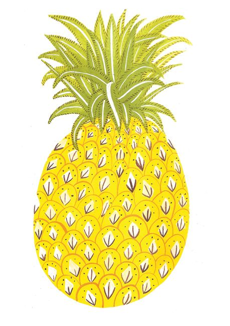 Pineapple / Caroline DowsettFruit Illustrations Pattern, Pineapple Graphic, Pineapple Art, Caroline Dowsett, Minis Pineapple,  Ananas, Design, Pineapple Illustration, Ananas Illustration