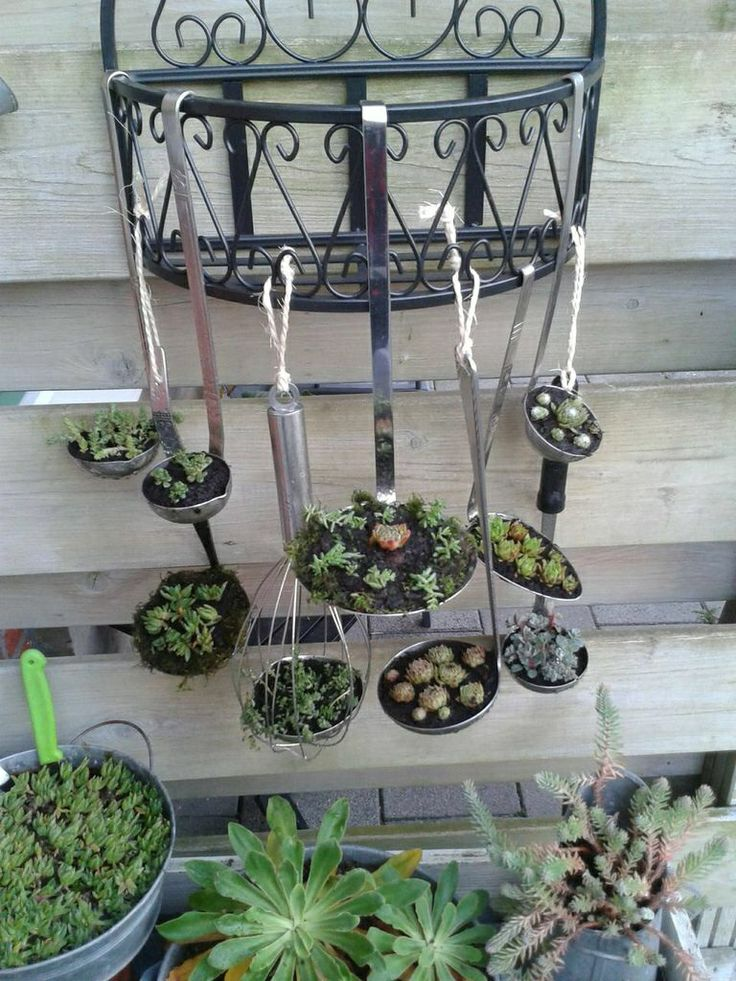 Vetplantjes op andere wijze planten. Ze moeten natuurlijk nog wel groeien