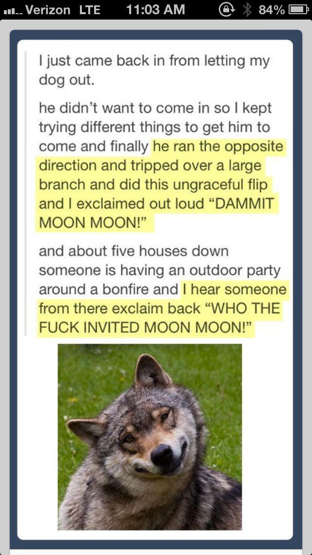 legolas is moon moon - Google Search
