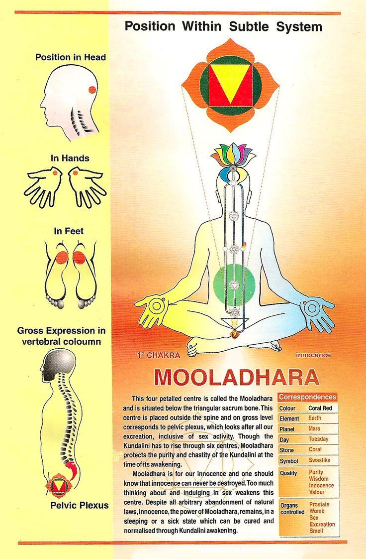 The Chakras With The Tarot Keys: Best 25+ Muladhara Chakra Ideas On Pinterest