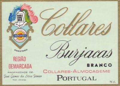 Noticias de Colares: Museu da Vinha e do Vinho
