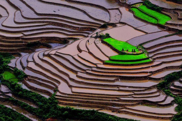 Mu cang chai by Hai Thinh, via 500px