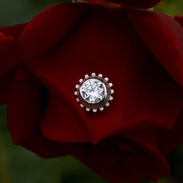 MAGNETIC earring on a rose  JEWELRY >> http://www.janekoenig.com/magnetic.html