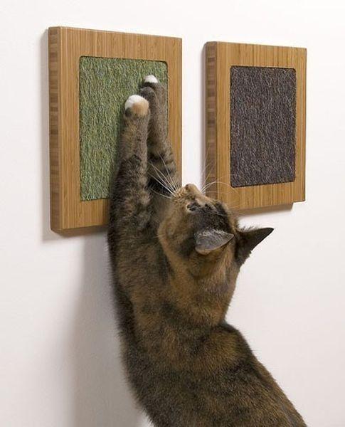 Pedaços de tecidos de carpete/tapetes emoldurados para as arranhudaras do gato (arte felina!) - deve ser pendurados de acordo com a altura apropriada ao gato.