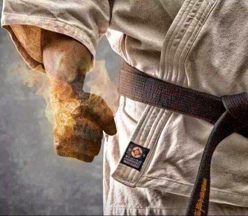 Ein Karateka lernt nicht nur die Kunst, er lebt mit der Kunst, i love Karate<3